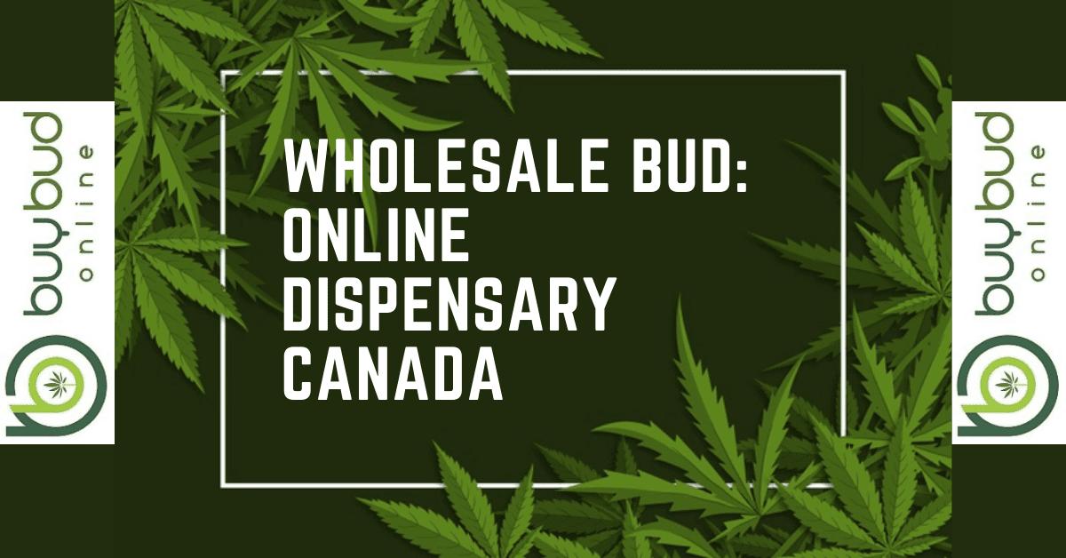 Wholesale Bud: Online Dispensary Canada