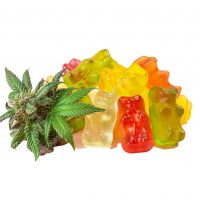 Gummy home 2